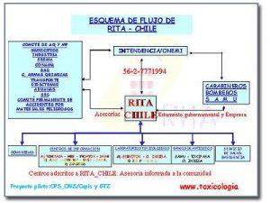 rita-chile-servicios-centro-de-documentacion
